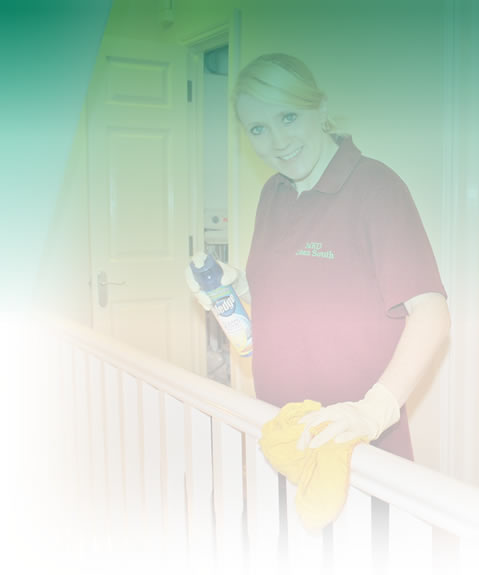 Professional domestic cleaners, Thanet